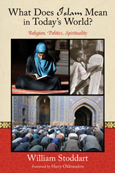 What Does Islam Mean in Today's World: Religion, Politics, Spirituality