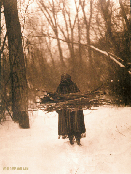 """Wood gatherer - Teton Sioux"", by Edward S. Curtis from The North American Indian Volume 3"
