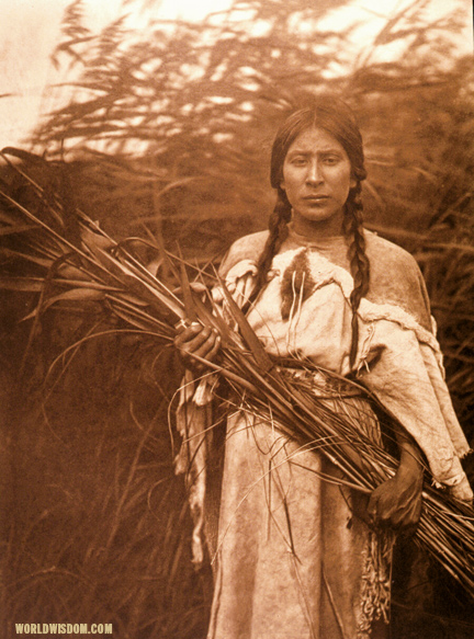 """Rush gatherer"" - Arikara, by Edward S. Curtis from The North American Indian Volume 5"