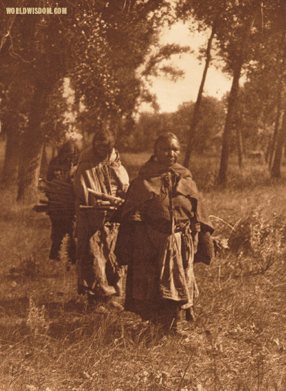 """Wood-gatherers"" - Cheyenne, by Edward S. Curtis from The North American Indian Volume 6"