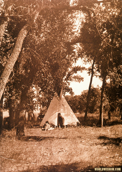 """Camp in the cottonwoods"" - Cheyenne, by Edward S. Curtis from The North American Indian Volume 6"