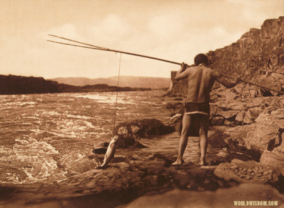 """Salmon fishing - Wishham"", by Edward S. Curtis from The North American Indian Volume 8"