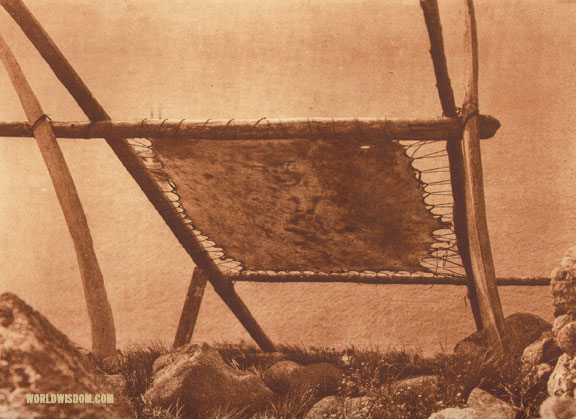 """Drying walrus hide"" - Eskimo of Little Diomede Island, by Edward S. Curtis from The North American Indian Volume 20"