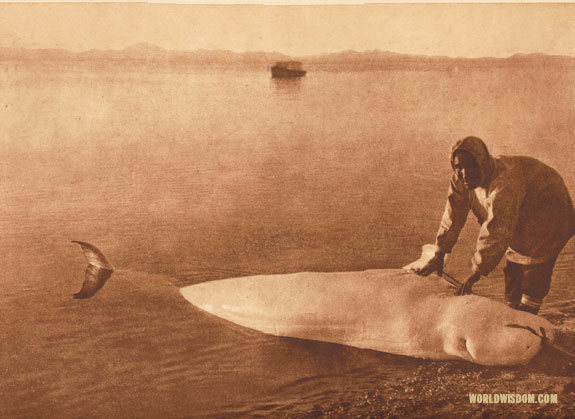 """The beluga"" - Kotzebue, by Edward S. Curtis from The North American Indian Volume 20"